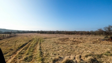 Farm land for sale Vrsar