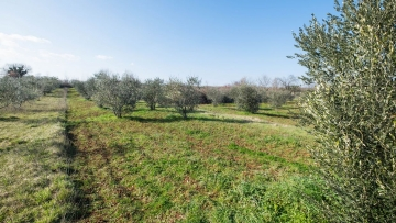 Building plot for sale Vareški Marčana