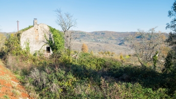 Stone house for sale Vižinada