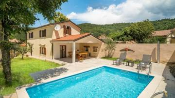 House with pool for sale Lupoglav