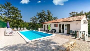 House with pool for sale Žminj