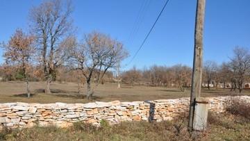 Poljoprivredno zemljište na prodaju Fažana