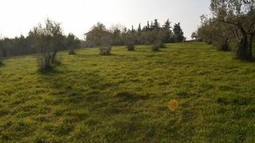 Građevinsko zemljište na prodaju Kaštelir